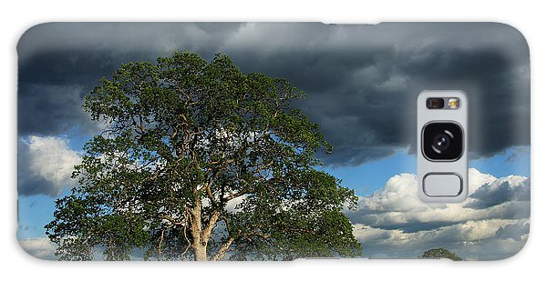 Tree With Storm Clouds Galaxy Case