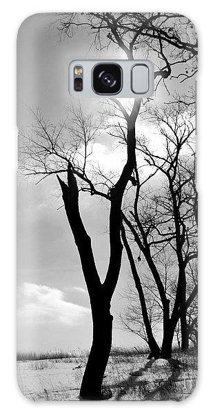 Tree3 Galaxy Case
