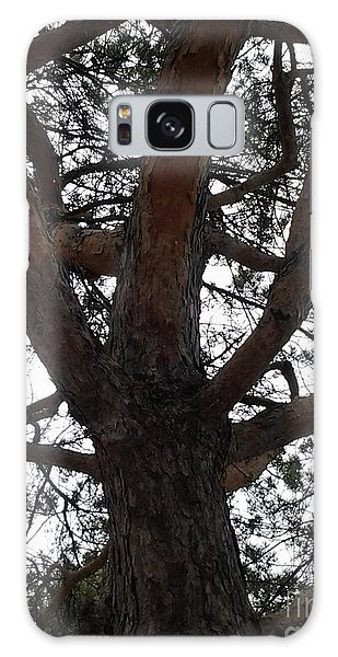 Tree4 Galaxy Case by Susan Townsend