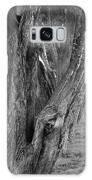 Trees Galaxy Case