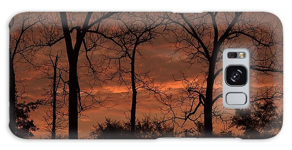 Trees At Sunrise Galaxy Case