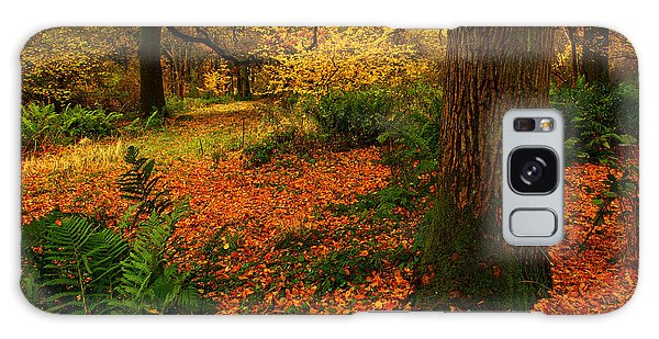 Trees In Autumn Woodland Galaxy Case