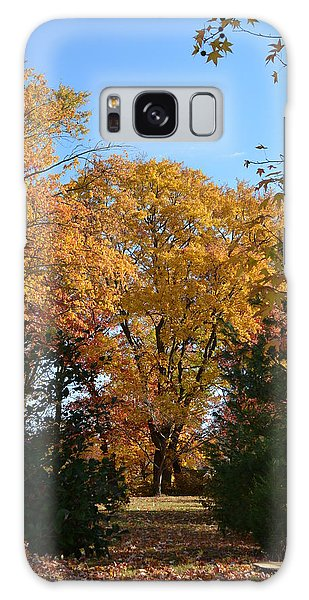 Trees In Fall Galaxy Case