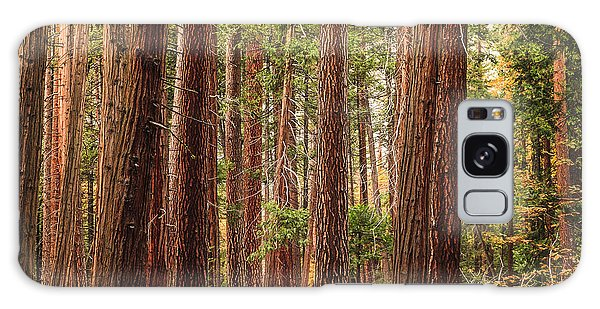 Trees Of Yosemite Galaxy Case