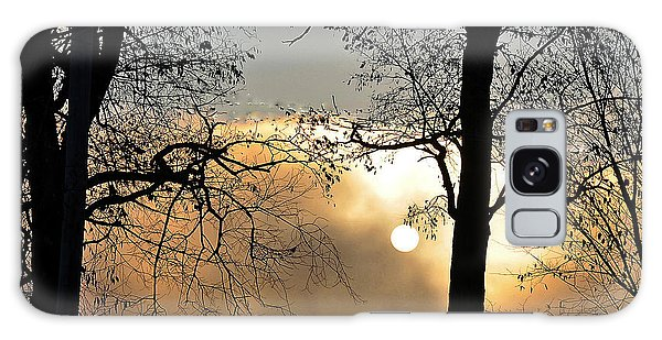 Trees On Misty Morning Galaxy Case