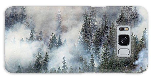 Beaver Fire Trees Swimming In Smoke Galaxy Case