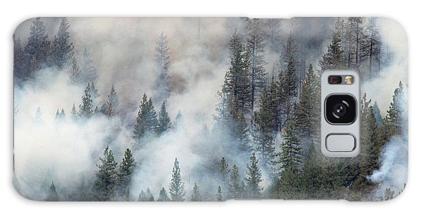 Beaver Fire Trees Swimming In Smoke Galaxy Case