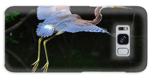 Tricolored Heron Galaxy Case by Charlotte Schafer