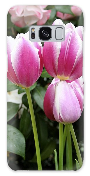 Trio Of Tulips Galaxy Case