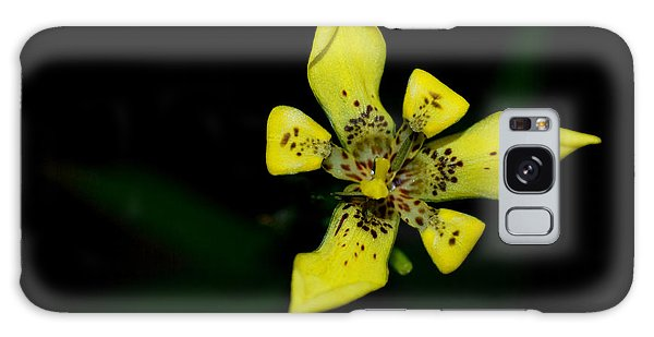Tropic Yellow Galaxy Case by Miguel Winterpacht