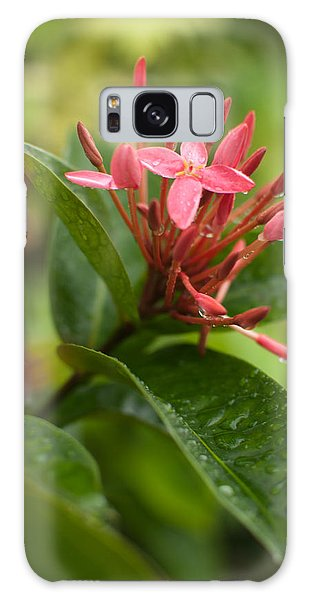 Tropical Flowers In Singapore Galaxy Case