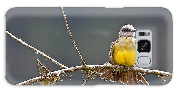 Tropical Kingbird Galaxy Case