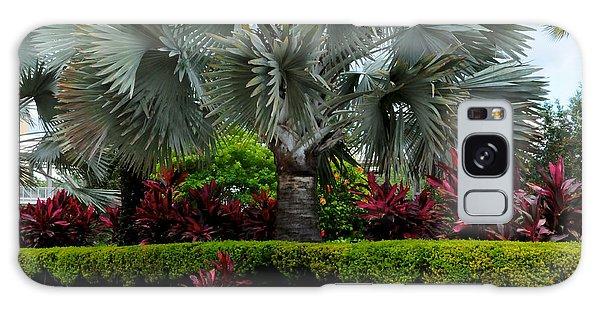 Tropical Landscape Galaxy Case