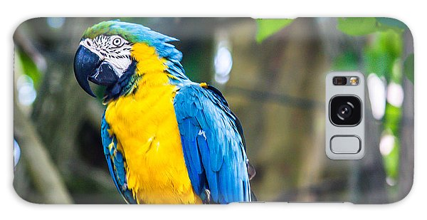 Tropical Parrot Galaxy Case by Sara Frank
