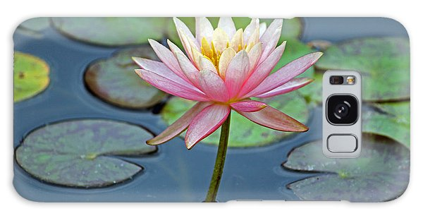 Tropical Pink Lily Galaxy Case by Cynthia Guinn