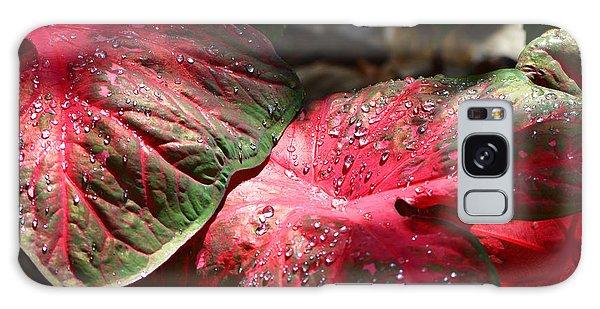 Bradenton Galaxy Case - Tropical Rain - Botanical Art By Sharon Cummings by Sharon Cummings