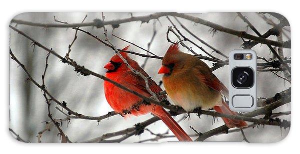 True Love Cardinal Galaxy S8 Case