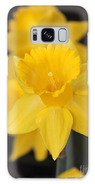 Trumpet Daffodil Named Exception Galaxy Case by J McCombie