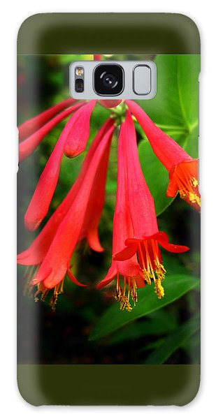 Wild Trumpet Honeysuckle Galaxy Case
