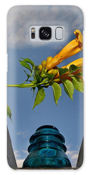 Trumpet Vine Galaxy Case