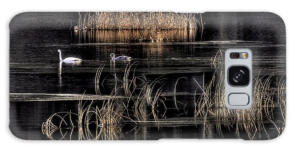 Trumpeter Swans A Swimming Galaxy Case