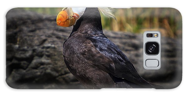 Tufted Puffin Galaxy Case