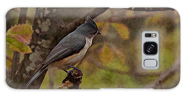 Song Birds Galaxy Case - Tufted Titmouse by Photos By  Cassandra