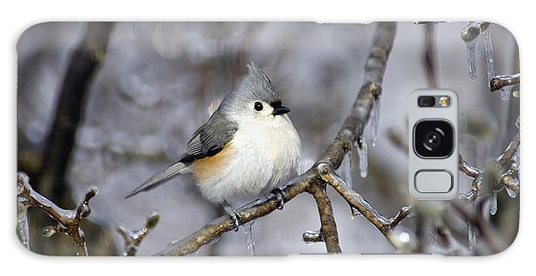 Feather Stars Galaxy Case - Tufted Titmouse - D008822 by Daniel Dempster