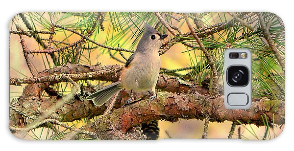 Tufted Titmouse Galaxy Case by Deena Stoddard
