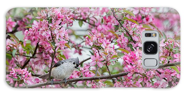 Tufted Titmouse In A Pear Tree Galaxy Case by Bill Wakeley