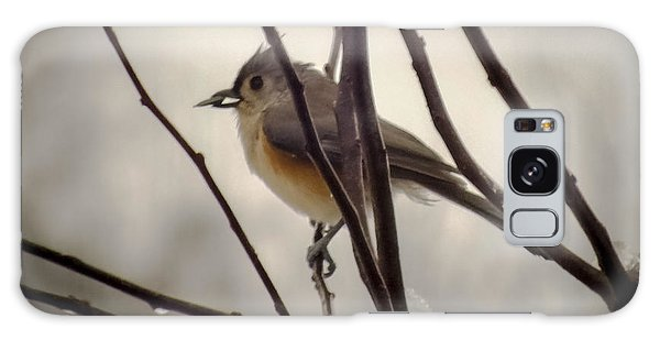 Tufted Titmouse Galaxy Case by Karen Wiles