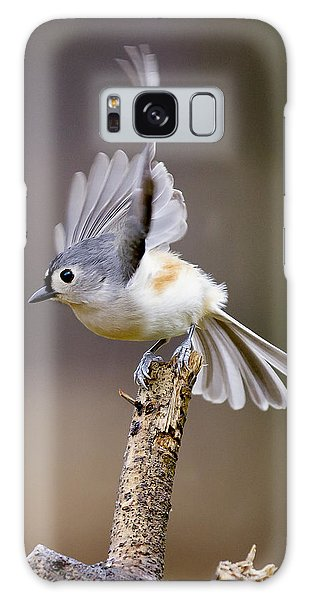 Tufted Titmouse Takeoff Galaxy Case by David Lester