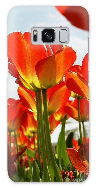Tulip Field 1 Galaxy Case by Rudi Prott
