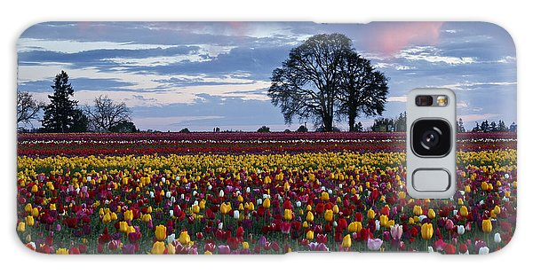 Tulip Field's Last Colors Galaxy Case by Wes and Dotty Weber