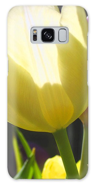 Tulip In Bright Sunlight Galaxy Case