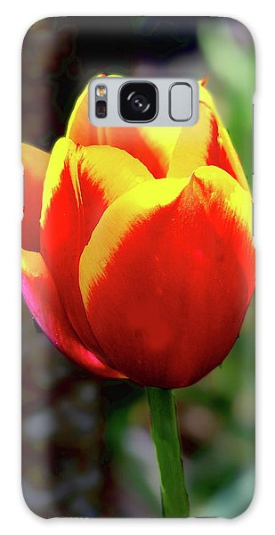Tulip Galaxy Case by Ron Roberts
