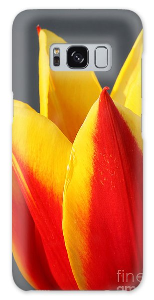 Tulip Galaxy Case