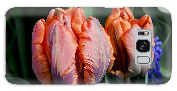 Irene Parrot Tulips Galaxy Case