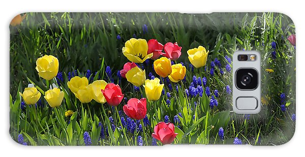 Tulips And Grape Hyacinths Galaxy Case
