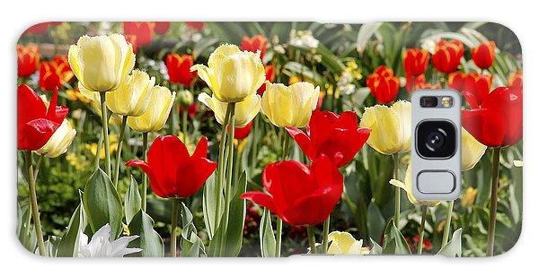 Galaxy Case - Tulips by Frank Savarese