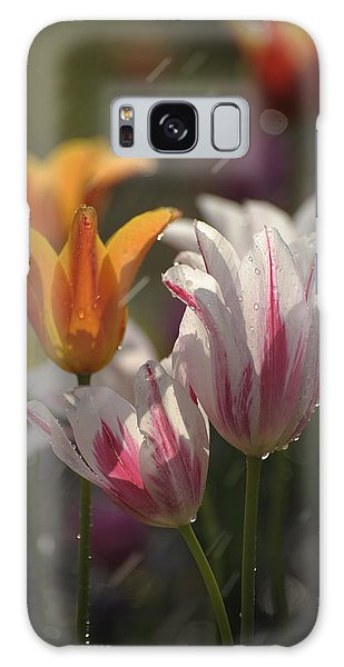 Tulips In The Rain Galaxy Case by Phyllis Peterson