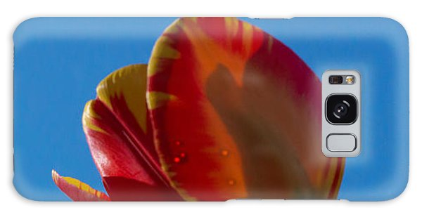 Tulips On Blue Galaxy Case by Photographic Arts And Design Studio