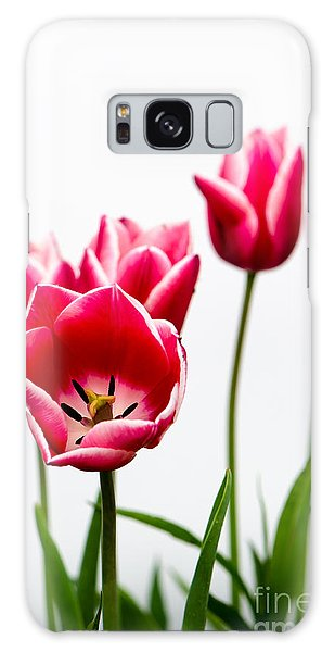 Tulips Say Hello Galaxy Case