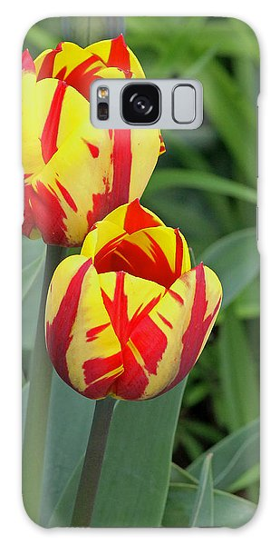 Tulips Galaxy Case by Tony Murtagh