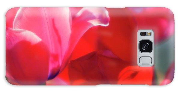 Hybrid Galaxy Case - Tulips (tulipa Hybrid) by Maria Mosolova/science Photo Library