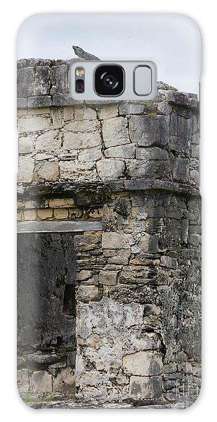 Tulum Ruins 14 Galaxy Case