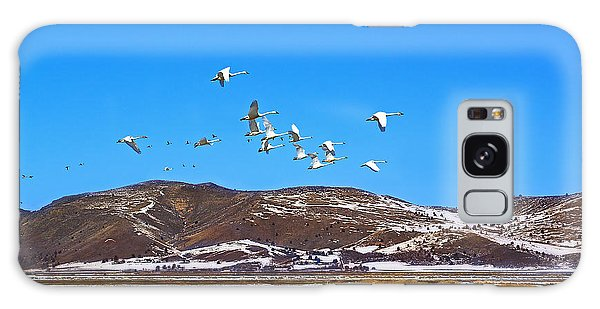 Tundra Swans Take Flight  Galaxy Case