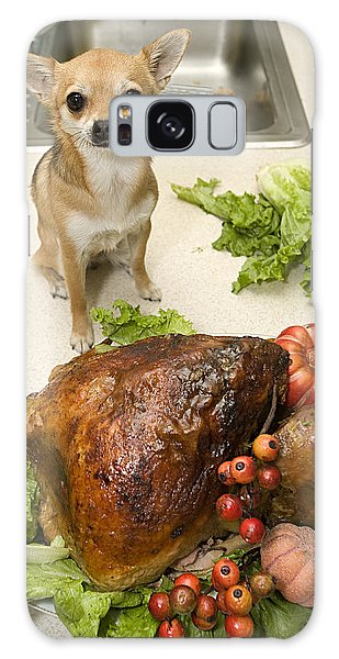 Turkey And Dog Galaxy Case