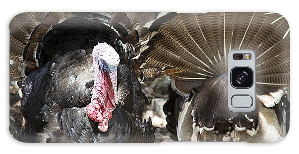Galaxy Case featuring the photograph Turkey by Debbie Cundy