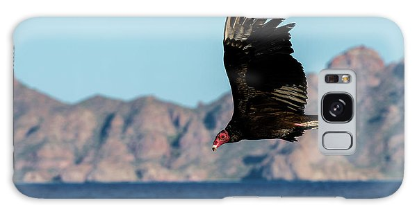 Islands In The Sky Galaxy Case - Turkey Vulture Cathartes Aura by Animal Images